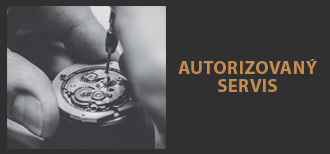 Autorizovan� servis
